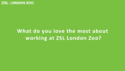 ZSL Green question card_250.png