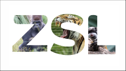 ZSL end logo outlined_250.png