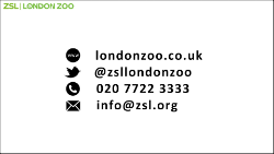 ZSL END black on white outlined1_250.png