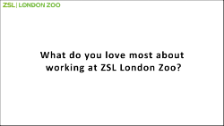 ZSL Black text q card outlined_250.png