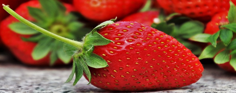 Five lessons from the strawberry needle crisis